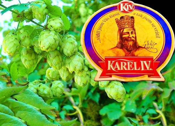 Карловы Вары: пивоварня «Карл IV.» - экскурсия AndyGo