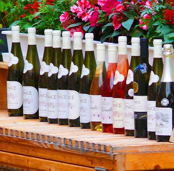 Вино и виноделие, винные праздники - в экскурсиях AndyGo